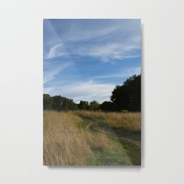 Tranquil Day No.1 Metal Print