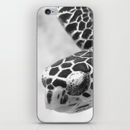 Hawksbill black and white iPhone Skin
