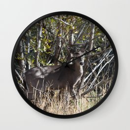 Doe at the edge of the woods line in Payson, Arizona Wall Clock