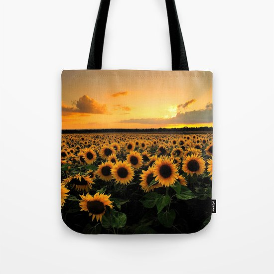 Sunflower field by antoniaelena