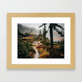 Pacific Northwest Forest Trail Framed Art Print