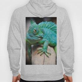 Gecko Reptile Photography Hoody