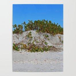 Dunes on Gasparilla III Poster