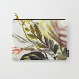 Peek Carry-All Pouch