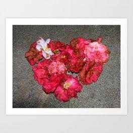 Camelia - Heart Art Print