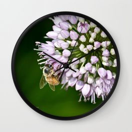 Honey Bee And Lavender Flower Wall Clock