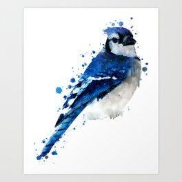 Watercolor blue jay bird Art Print