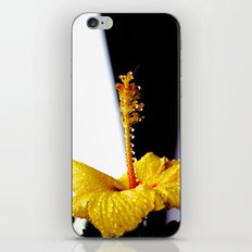 Wet Hibiscus iPhone & iPod Skin