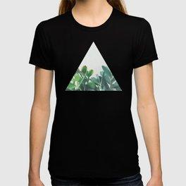 Crassula Group T-shirt