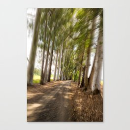 Spin Road Canvas Print