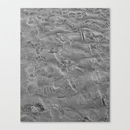 we all leave our mark. Canvas Print