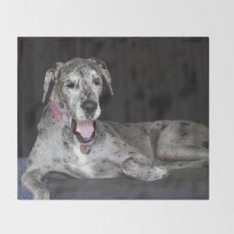 Happy Great Dane Throw Blanket