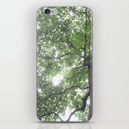 Summer Rays iPhone Skin