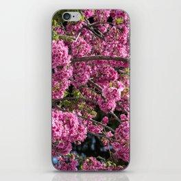 Beautiful pink flowers iPhone Skin