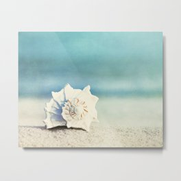 Seashell on Beach Photography, Aqua Blue Shell Coastal Photo, Teal Turquoise Ocean Seashore Metal Print