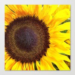 Center of the Sun Canvas Print
