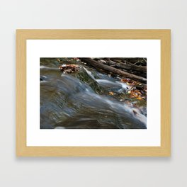 Forest Stream 2 Framed Art Print
