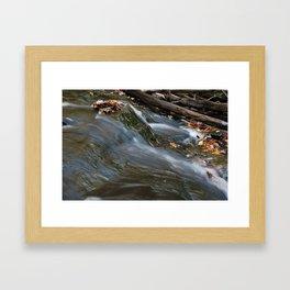 Forest Stream 2 Framed Art Print