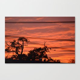 Orange Nikon Canvas Print