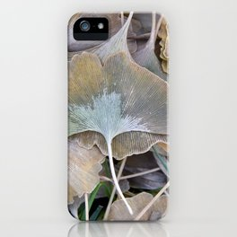 Ginko Leaves in Fall iPhone Case