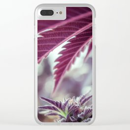 Covered in Cannabis marijuana plant weed photograph Clear iPhone Case