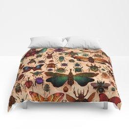 Love Bugs Comforters