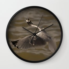 Seagull without head in the #sky  Wall Clock