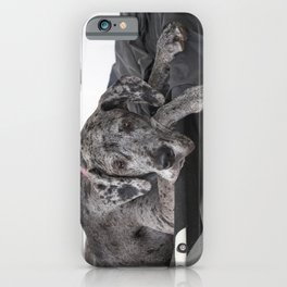 Great Dane waiting iPhone Case