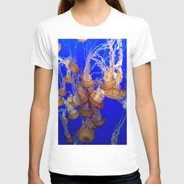 Monterey Bay Jellyfish T-shirt