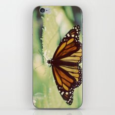 Monarch iPhone & iPod Skin