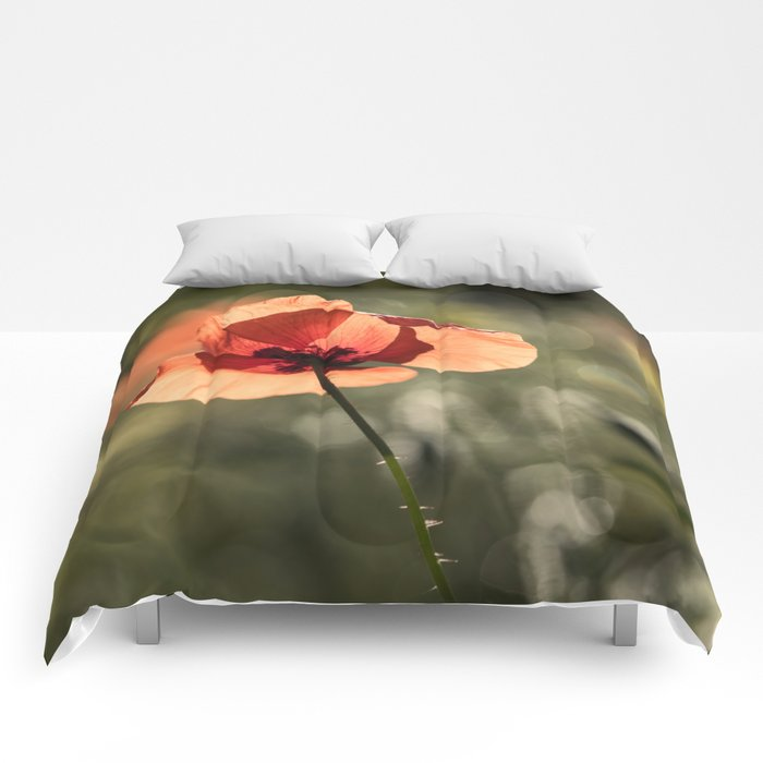 Enlightened Poppies at early backlight Comforters