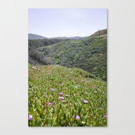 Montaña de Oro Hillside Canvas Print