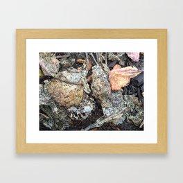 A break in the rain, dried collard green leaves Framed Art Print
