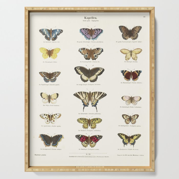 Vintage Butterfly Chart Serving Tray
