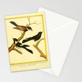 097 gobe mouche (Fr) Stationery Cards