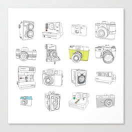 My Camera Collection Canvas Print