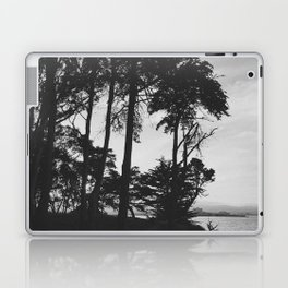 COYOTE POINT IV (B+W) Laptop & iPad Skin