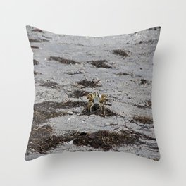 Competing Crabs Throw Pillow