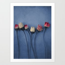 Tender Flowers 29 Art Print
