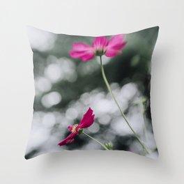 Cosmos flower III Throw Pillow