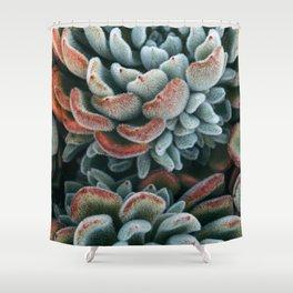 Autumn Succulent #1 Shower Curtain