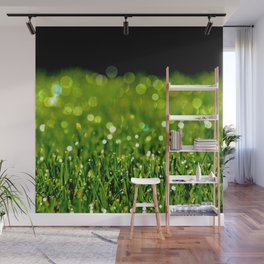 morning dew Wall Mural