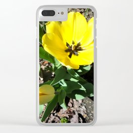 Yellow Crocus Flowers Clear iPhone Case