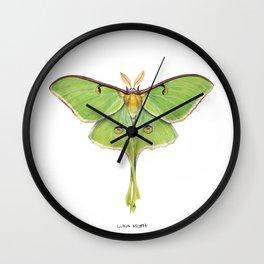 Luna Moth (Actias luna) II Wall Clock