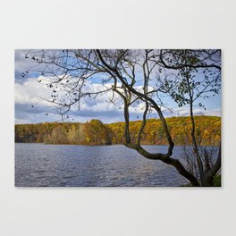 Autumn at Hall Lake by Yankee Springs in Michigan Canvas Print