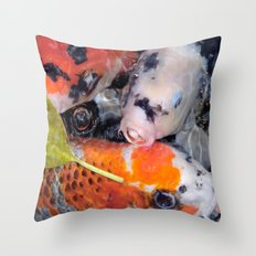 Koi Eyed Throw Pillow