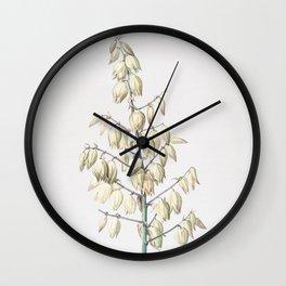 Vintage Adam's Needle Illustration Wall Clock