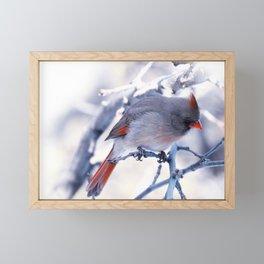 Winter lady cardinal Framed Mini Art Print