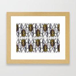 Amber Cicadas Framed Art Print