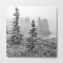 Scenic Landscape Art, Lakeside Wilderness, Fog Metal Print